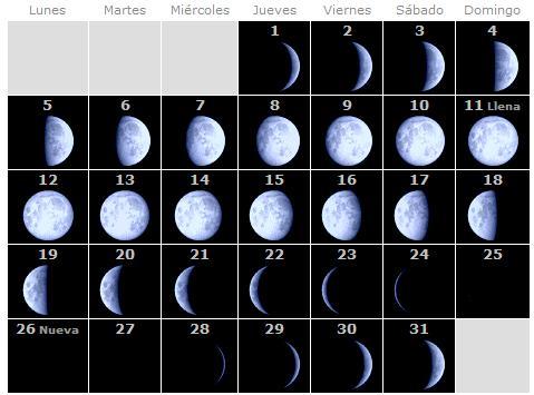Calendario Lunar Enero 2009